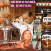 <em>genio di Arcore</em><br>CROMOSOMA DI SINTESI